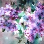 """Zigurds Šnore """"Ceriņi"""" akvarelis, 50x70, b.g."""